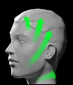 Visuel-visage-vert